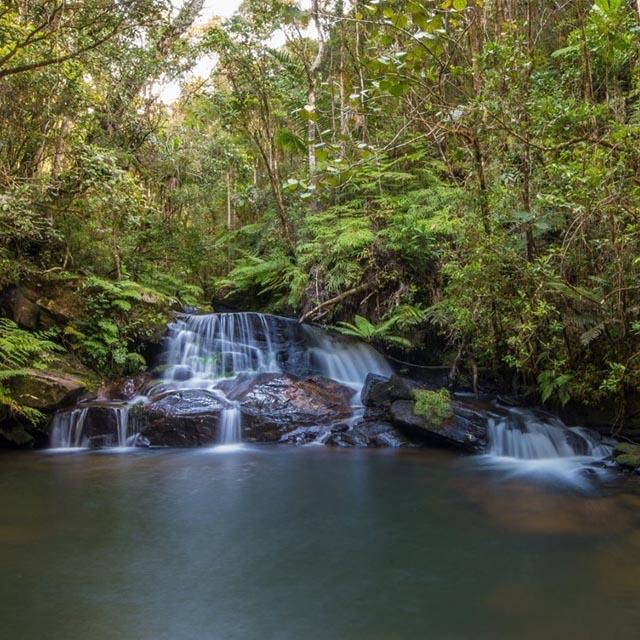 Parcs et réserves nationaux